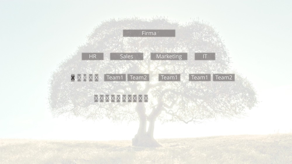 Hierarchische Ornigramm.jpg